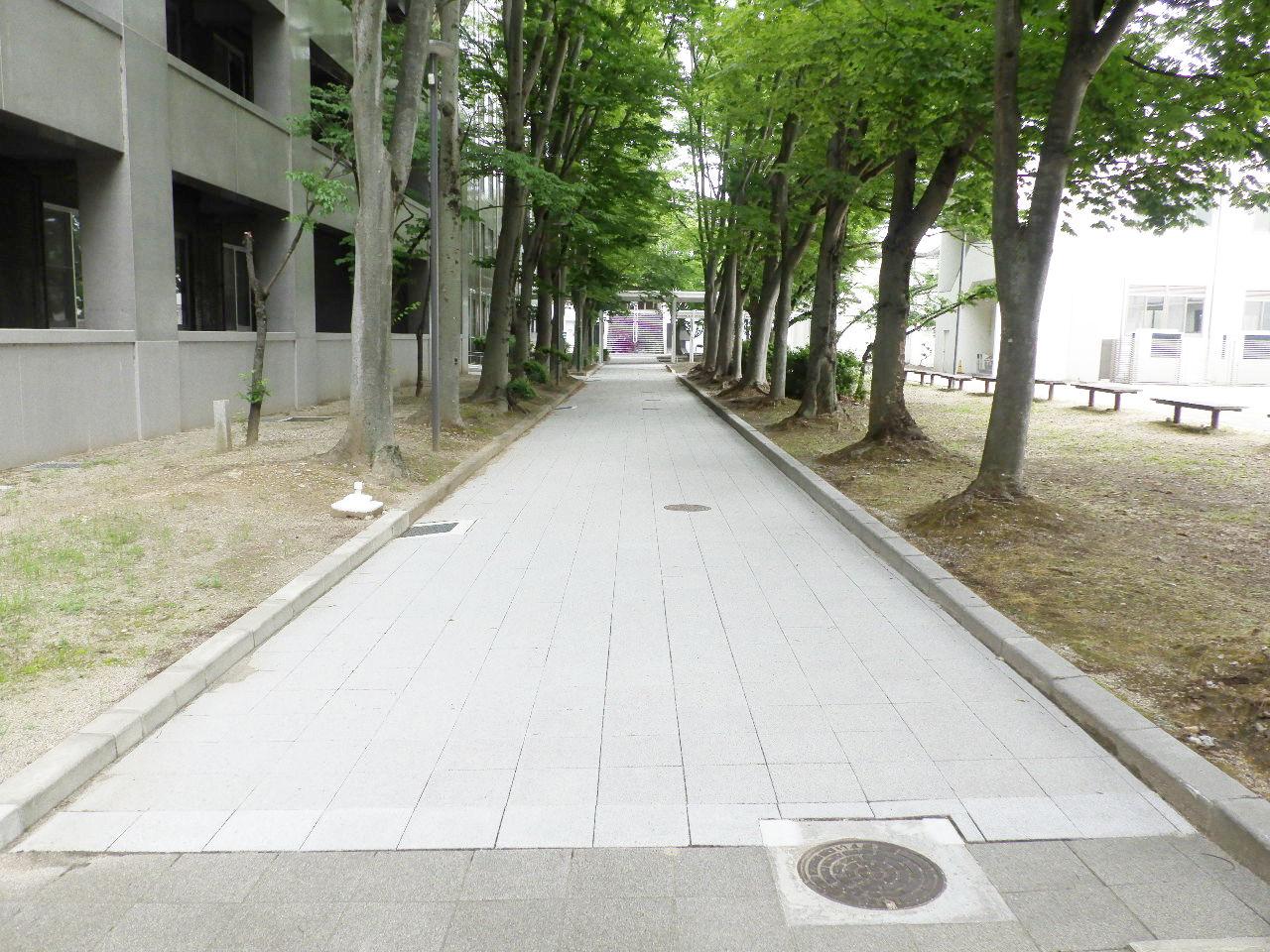 滋賀大学(彦根)基幹整備(給排水設備等)工事 画像01